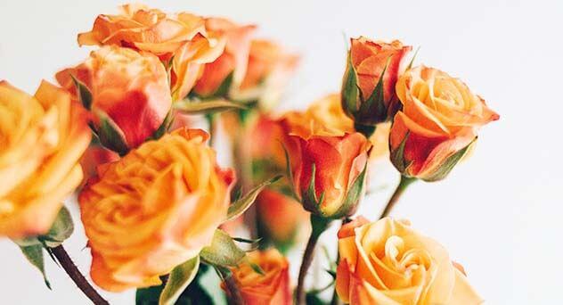 桃園禮儀公司 – 愛心公益群組,一起讓社會越來越溫暖